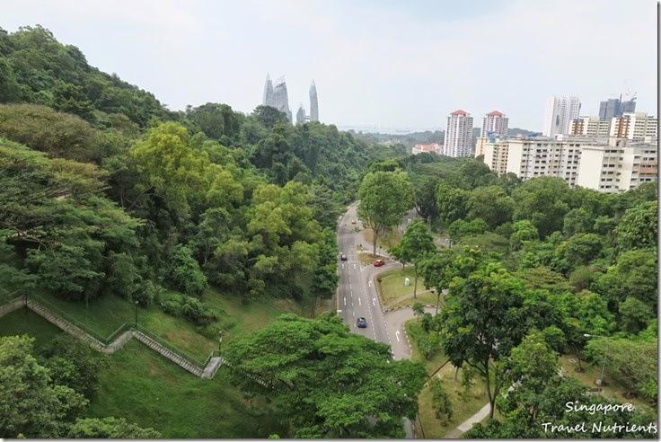 新加坡花柏山 (46)