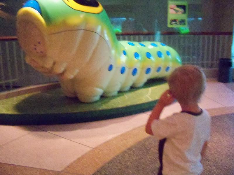 Houston Museum of Natural Science - 116_2843.JPG