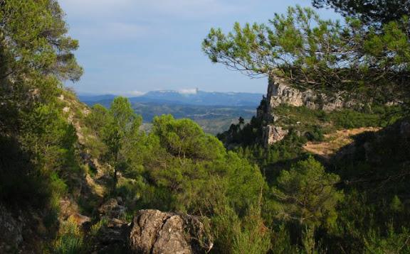 Paisatge del Priorat.jpg