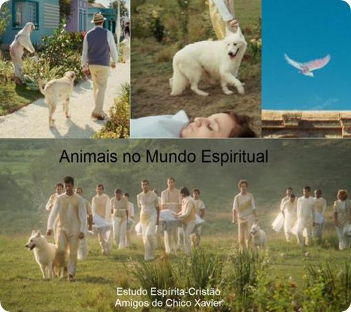 Animais no Mundo Espiritual