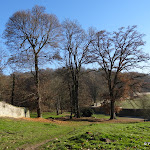 Abbaye Port-Royal des Champs : enceintes et chemin Jean Racine