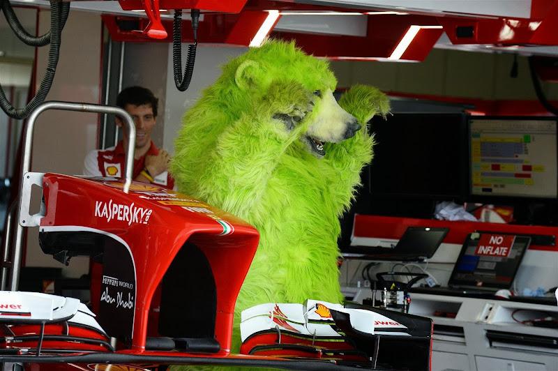 зеленый медведь в боксах Ferrari на Гран-при Японии 2013