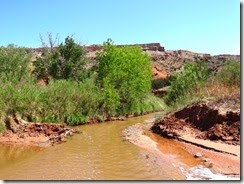 Palo Duro Canyon, Amarillo, TX 198