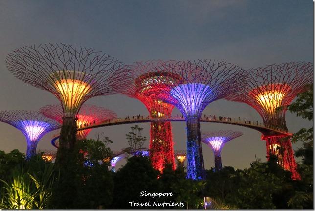 新加坡超級樹燈光秀 (22)