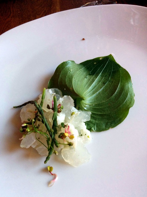 Sturgeon Marrow Salad, Sorrel & False Lily
