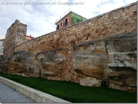 Murallas de Zamora 2