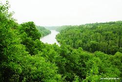 """Přírodní památka """"Želinský meandr"""" má rozlohu 174,5 ha a byla vyhlášena v roce 1992. Území je chráněno geologicky a geomorfologicky. Těžko přístupné, skalnaté svahy, prorůstají stepní, lesostepní a lesní vegetací s výskytem ohrožených druhů rostlin a živočichů."""