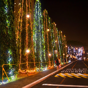 by Gi Masangya - City,  Street & Park  City Parks ( christmas lights, christmas park, street, christmas, photography, street photography, street life, night photography, nikon d3100, night, nikon, philippines, night shot )