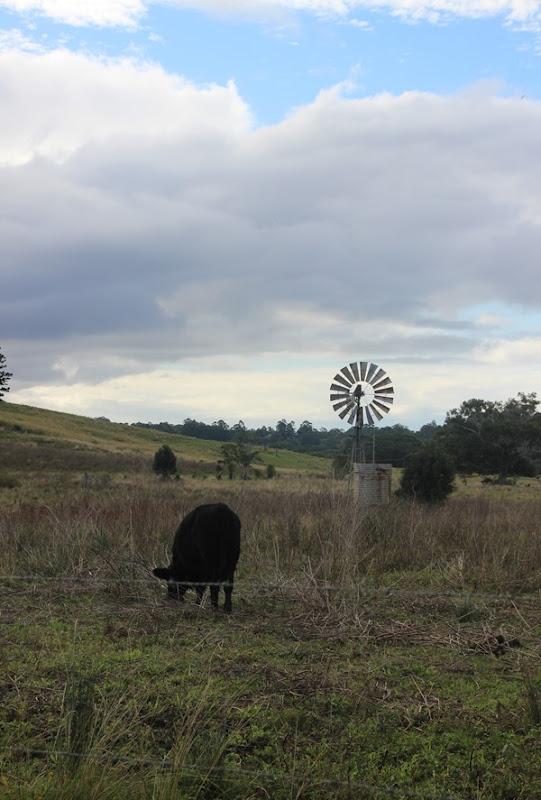 Wishful Thinking - The Hinterlands