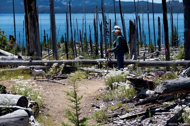 Waldo Lake Camping-043