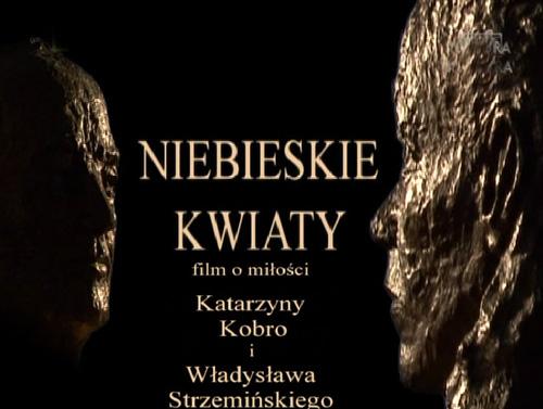 Niebieskie kwiaty film o mi³o¶ci Katarzyny Kobro i W³adys³awa Strzemi?skiego (2011) PL.TVRip.XviD / PL