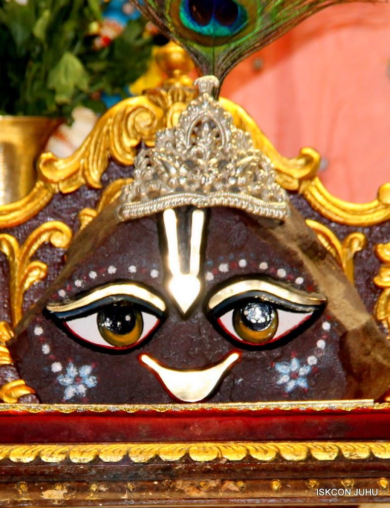 ISKCON Juhu Mangal Deity Darshan 11 Feb 16 (34)