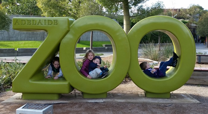 virtù - adelaide zoo