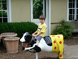 Giddy-Up-COW