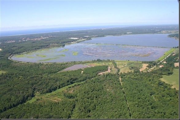 03. Reserve-naturelle-du-Marais-d-Orx - copia
