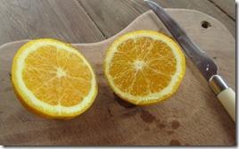 Orange aus dem Garten