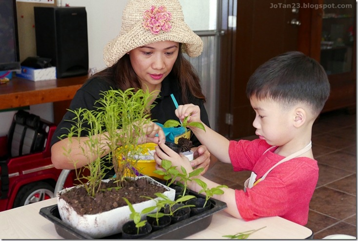 Jensen Kinder Farm Organic Farming for Kids and Adults Quezon City - jotan23 (25)