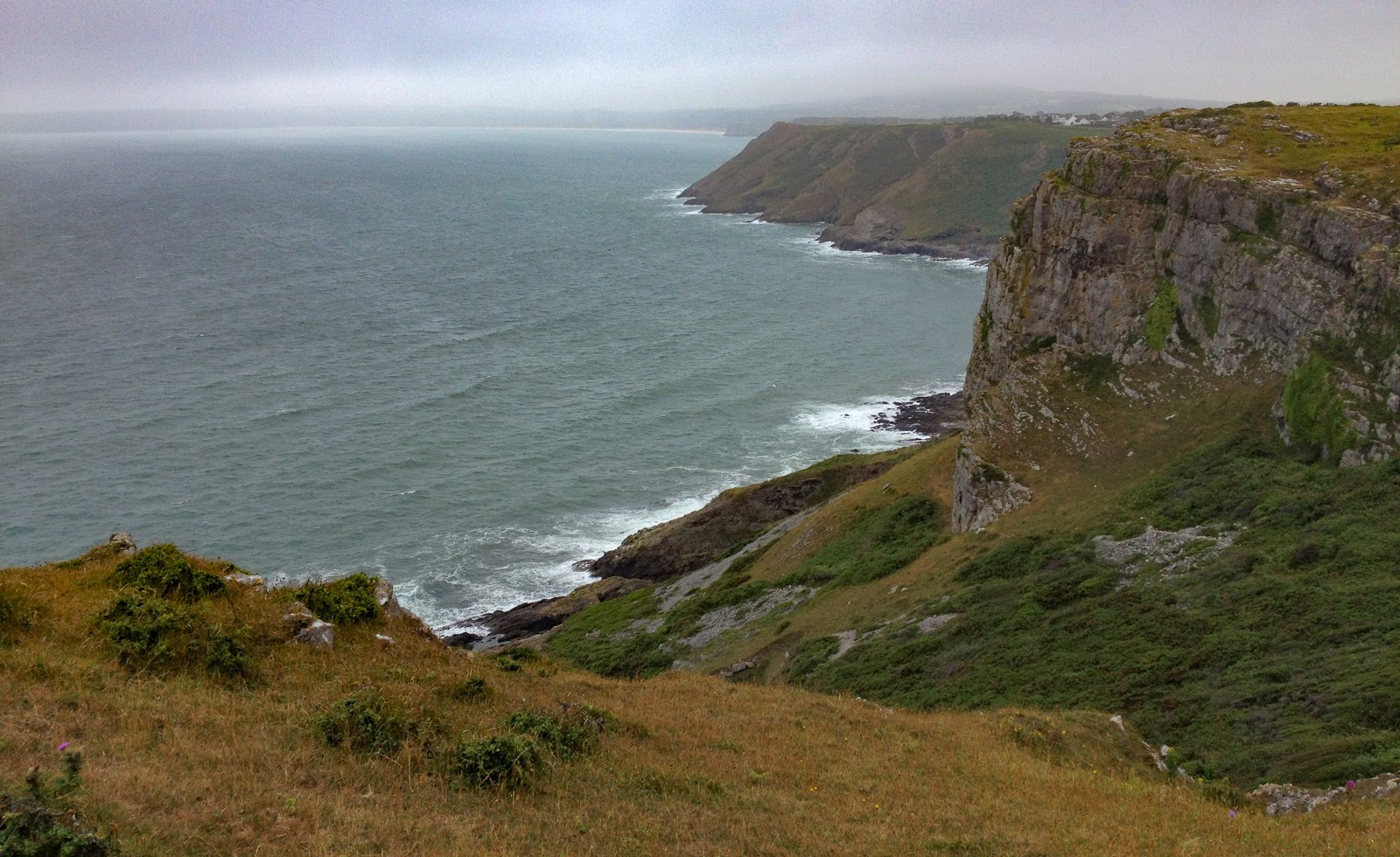 Gower (7 of 33).jpg