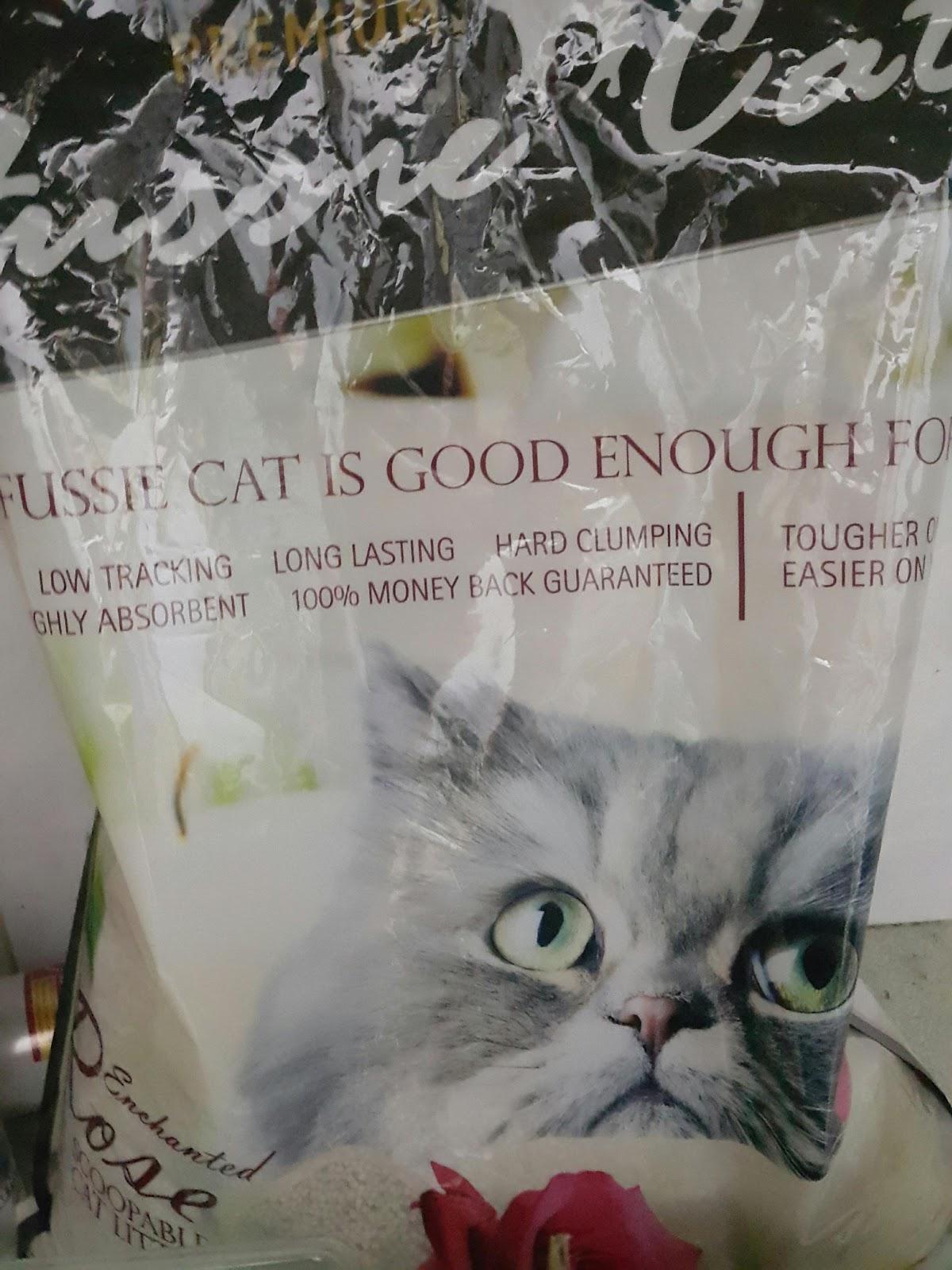 Cerita Yna Keperluan Kucing Saya Yang Meowvellous