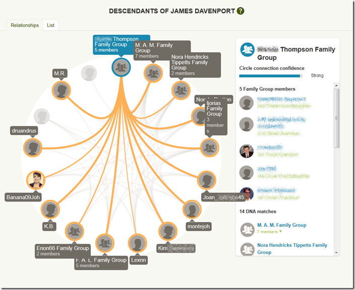 Diagram of the relationships in the AncestryDNA DNA Circle for James Davenport