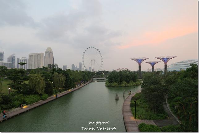 新加坡超級樹燈光秀 (7)