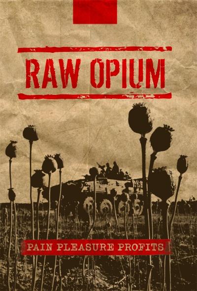Opium. Ból, rozkosz, zysk / Raw Opium (2010) PL.TVRip.XviD / Lektor PL