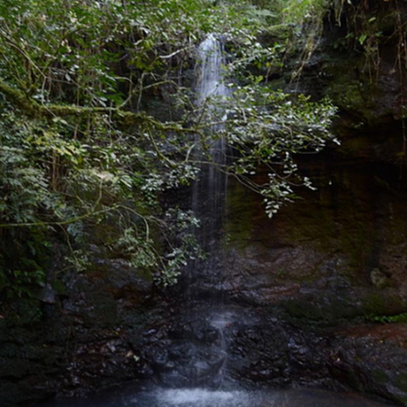 El Salto Encantado es uno de los saltos más impactantes de la provincia de Misiones.
