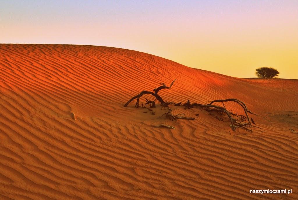 Słońce na pustyni obudziło nas kilka minut przed godziną 6.