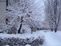 S. Fitzhugh lots of snow