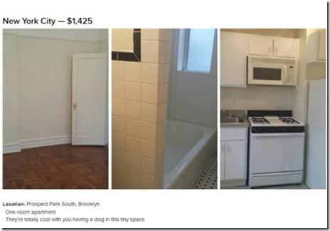 housing-1500-dollars-006