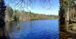 Am Silberteich bei Braunlage im Nationalpark im Harz