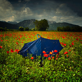 Poppies and umbrella by Luigi Esposito - Landscapes Prairies, Meadows & Fields ( clouds, mountains, sky, umbrella, cloudscape, poppies, flowers )