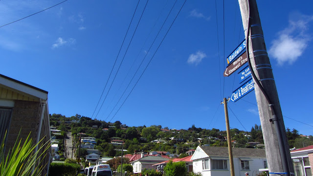 Baldwin Street in Dunedin, NZ - the world's steepest street.