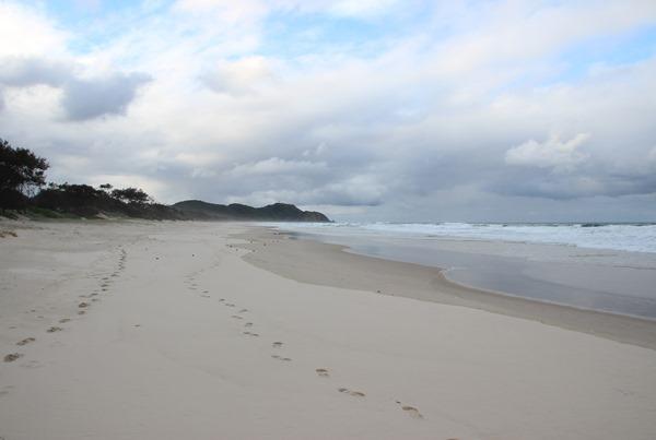 Wishful Thinking - Tallow Beach
