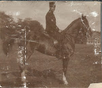 Jan Willem Serné * 20-8-1888, Haarlem † 16-12-1947, Amsterdam beroep: ordonnans-trompetter bij de Huzaren