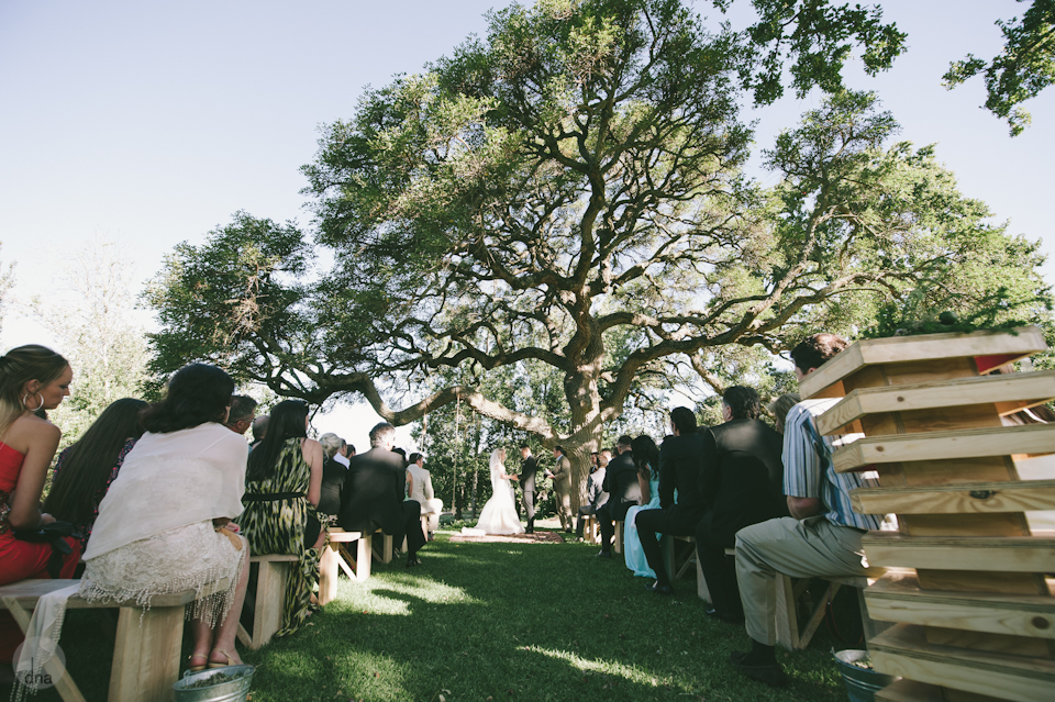 Paige and Ty wedding Babylonstoren South Africa shot by dna photographers 195.jpg