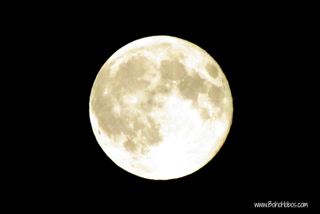 Aug Full Moon