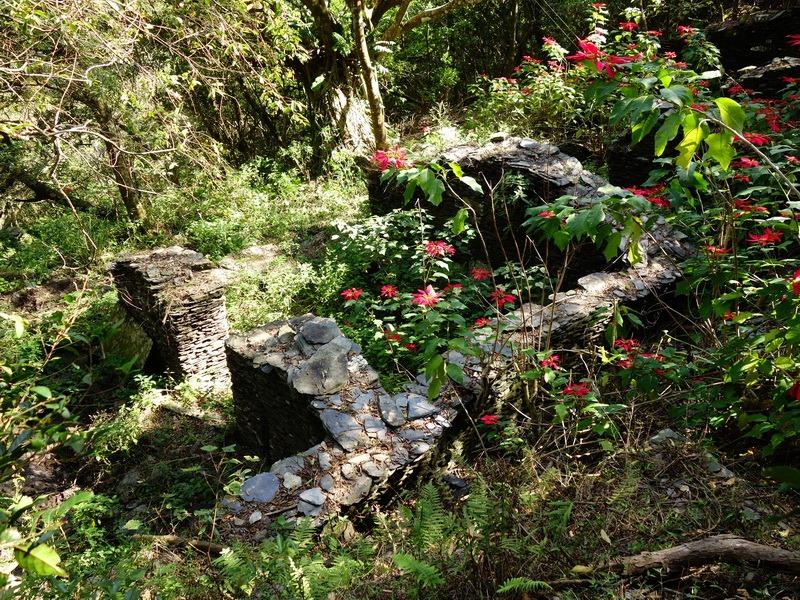 2014_0101-0105 萬山神石、萬山岩雕順訪萬頭蘭山_0128