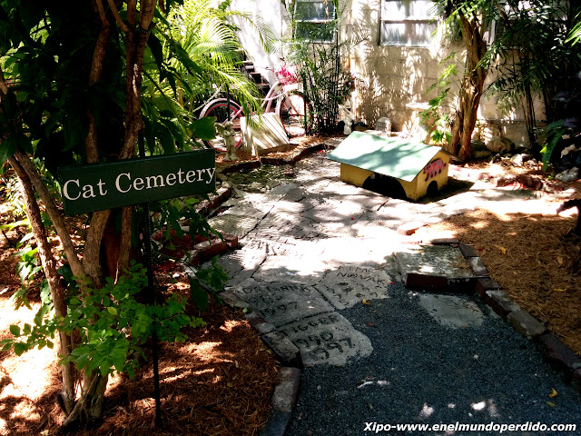 cementerio-de-gatos.jpg