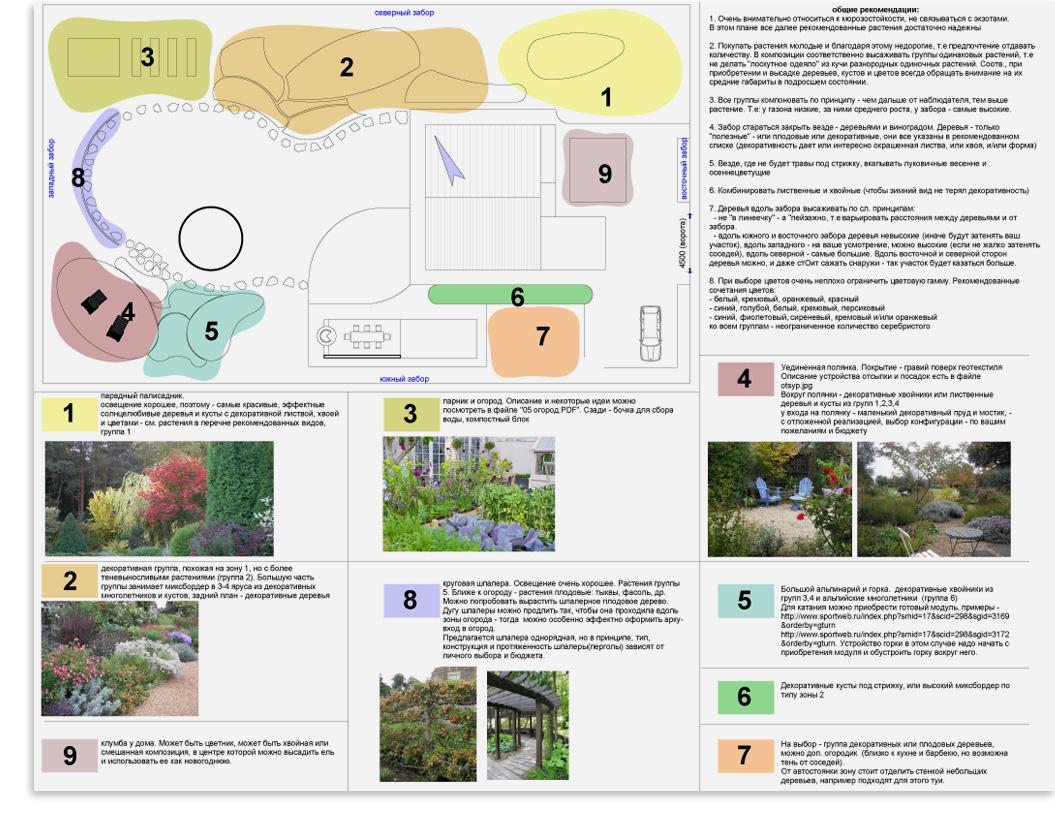 Размеры плодовых деревьев и кустарников на схеме