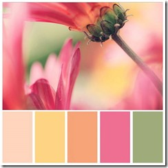 Combo de cores