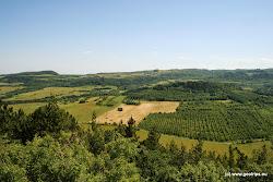 U obce Pokutice se nachází na mohutné stolové hoře, tvořené lávovými proudy, Národní přírodní rezervace Úhošť (115 ha).