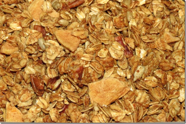 Cinnamon Apple Granola (Gluten Free)