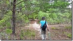 Blue Spur Trail