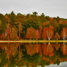 Tranquil Transition by Kathy Woods Booth - Landscapes Waterscapes ( michigan, reflection, waterscape, autumn, autumn colors, mirror reflections )