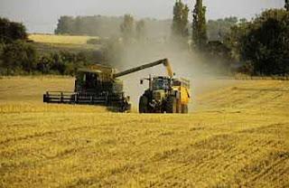 L'Algérie et l'Inde pensent à créer des sociétés mixtes dans le domaine agricole