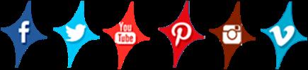 redes sociales de star vie 2015