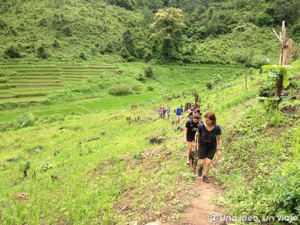trekking-norte-tailandia-minorias-etnicas--unaideaunviaje.com-14.jpg