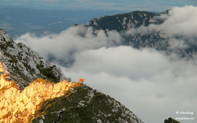 Piatra-Craiului-Nordica-7321.jpg