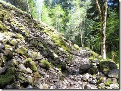 lewis river falls 25